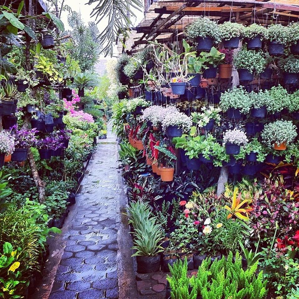 pasar bunga bratang